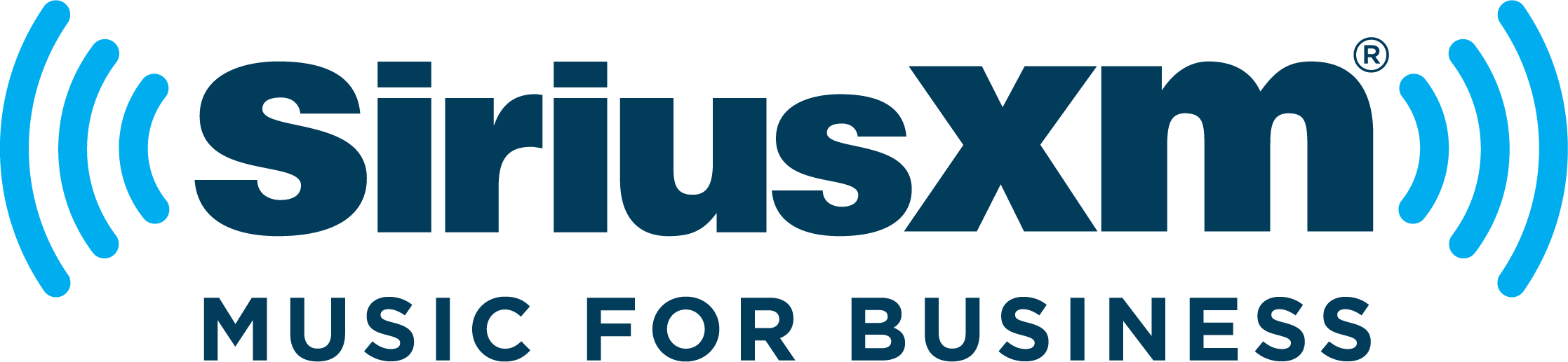 sirius xm broadcast online business plan